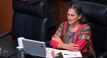 Senadora de Morena afirma que la marihuana no es una droga, sino una planta sagrada