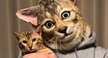 Sí, ahora puedes usar máscaras idénticas al rostro de tu mascota