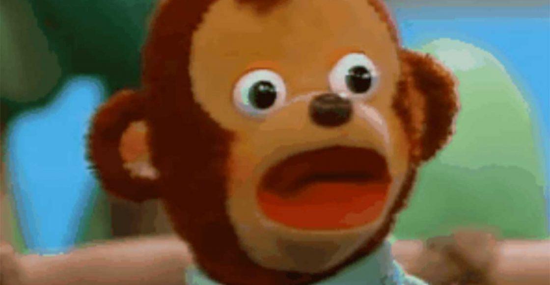 """Résultat de recherche d'images pour """"monkey shook meme template"""""""""""