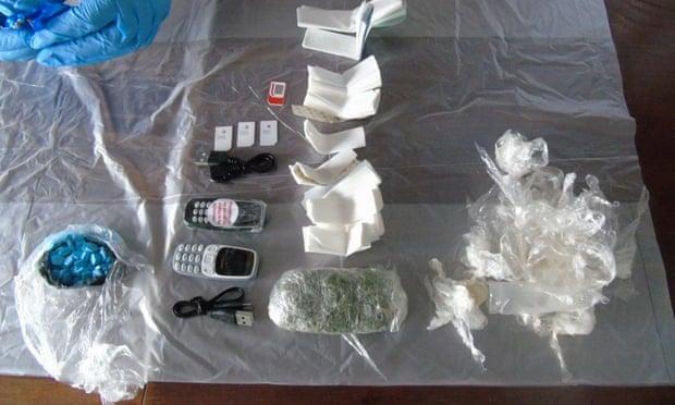 ratas usadas para contrabandear drogas