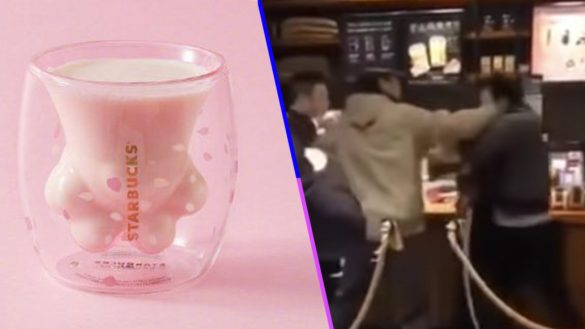 WTF?! La gente se está peleando por unas tazas especiales de gatos que venden en Starbucks