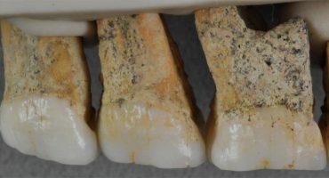 Hallan restos de nueva especie humana conocida como 'Homo luzonensis'