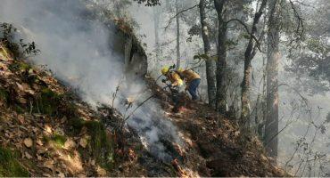 Combaten incendio forestal en cerro del Pinal, Puebla; ya lleva más de un día