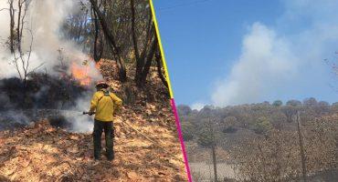 ¿Otra vez? Se incendia el Bosque la Primavera en Jalisco