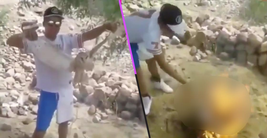 """Mundo enfermo y triste: Un par de jóvenes quemó viva a una lechuza porque """"era una bruja"""""""
