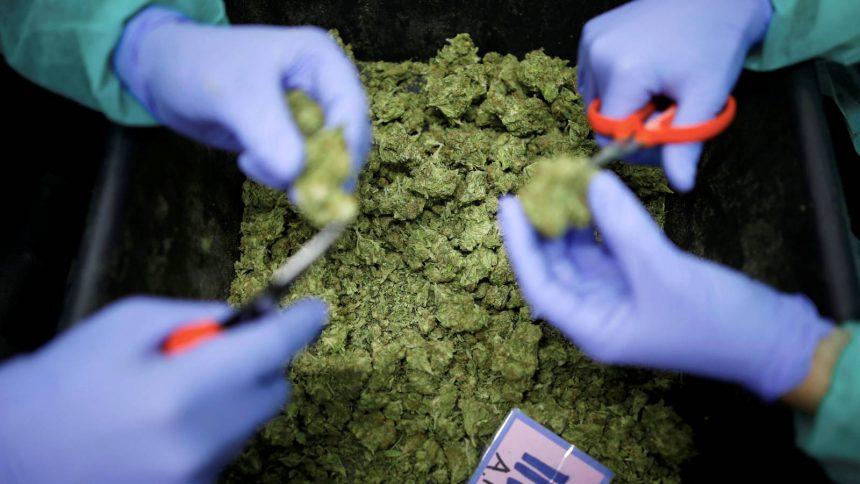 Encuentran heces fecales en la droga que se vende en las calles de Madrid