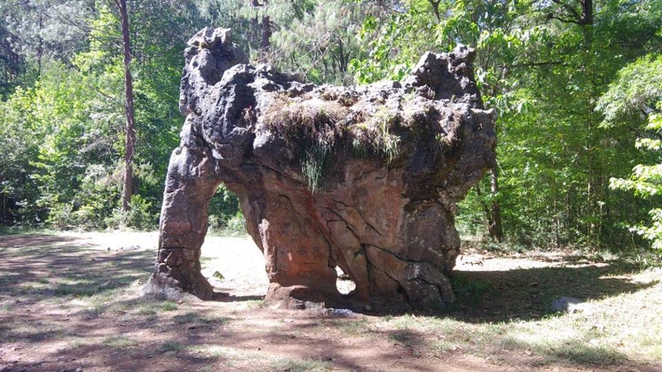 La Piedra del Elefante, Tamaulipas