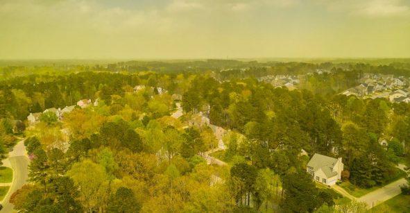 El polen consumió una ciudad en EUA y las fotos te darán alergia