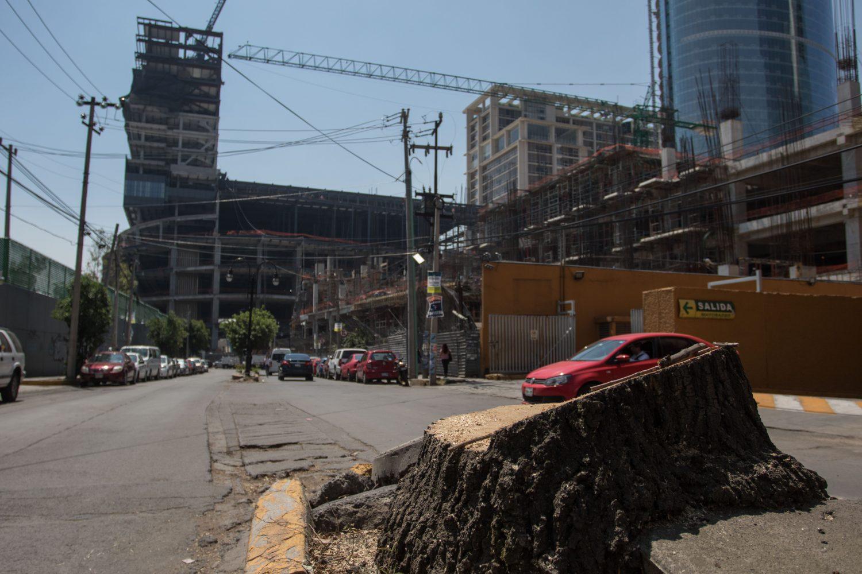 CIUDAD DE MÉXICO, 07MAYO2019.- Trabajadores de la Torre Mitikah talaron alrededor de 60 árboles en la calle Real de Mayorazgo, entre las avenidas Universidad y México Coyoacán, al parecer sin permiso del Gobierno de la Ciudad de México.