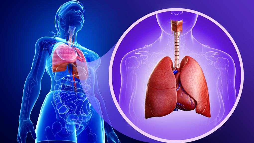 Una inteligencia artificial detecta el cáncer de pulmón con mayor precisión que los médicos