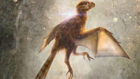 Dinosaurio con alas de murciélago - Ambopteryx