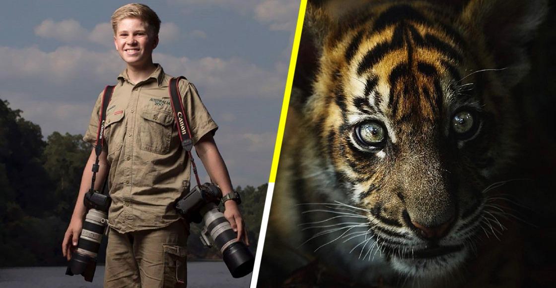 ¡Mira estas fotos de vida salvaje tomadas por el hijo de Steve Irwin!