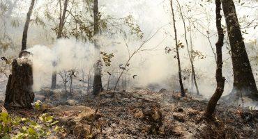 Incendio de Jalpan en Querétaro ya es