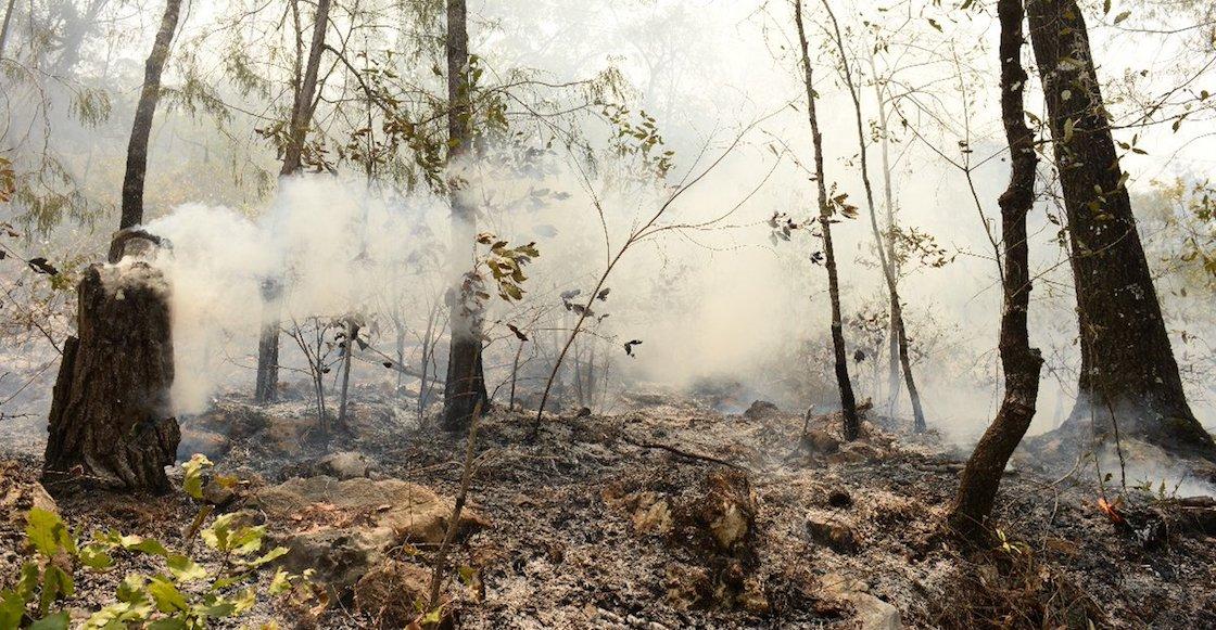 incendio-jalpan-queretaro-emergencia-nacional