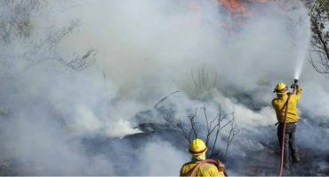 Aún se reportan 106 incendios forestales en 19 estados: Conafor