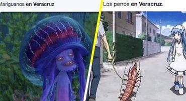 ¿Cuál es la razón por la que la memiza está agarrando de bajada a Veracruz?