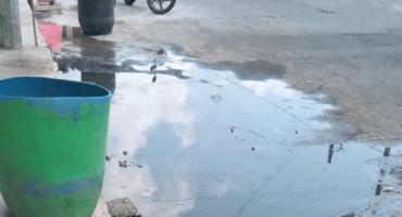 Lerdo de Tejada, Veracruz, registra más casos de dengue, ante inoperancia del gobierno: MCCI
