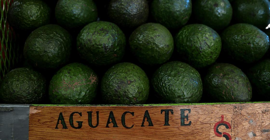 Venden en $130 pesos el kilo de aguacate en mercados del país