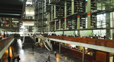 Biblioteca Vasconcelos permanecerá cerrada; se cancelan actividades