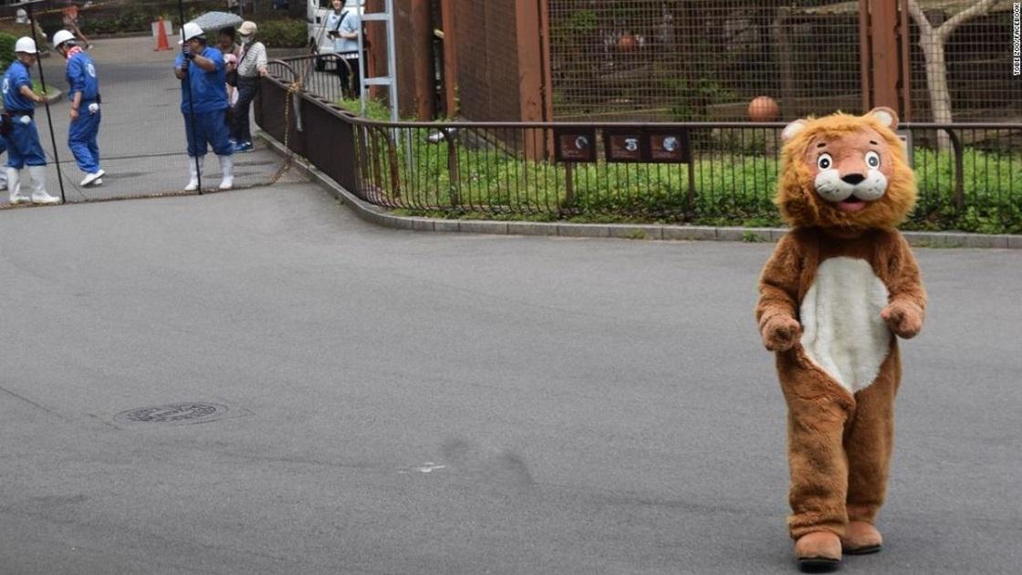 Con todo y botarga: Así se practican los simulacros de animales sueltos en Japón