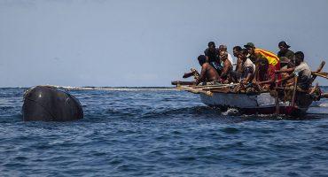 Japón reanudará la caza legal de ballenas luego de 33 años de prohibición 😕