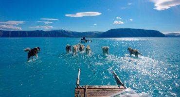¿Ya nos preocupamos? El hielo de Groenlandia se está derritiendo de forma 'anormal'