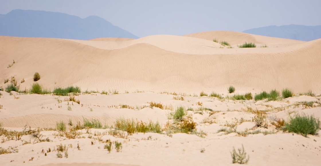 Tolvanera del desierto del Sahara llegará el viernes a Monterrey