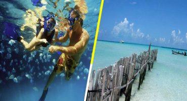 Estas son las mejores playas de México para visitar en verano del 2019 ☀️