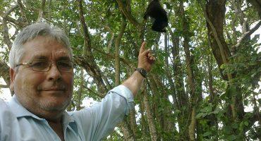 Asesinan a José Luis Álvarez, ambientalista y defensor del mono saraguato