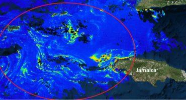 Se acerca a Quintana Roo una mancha de sargazo de 550 kilómetros de diámetro