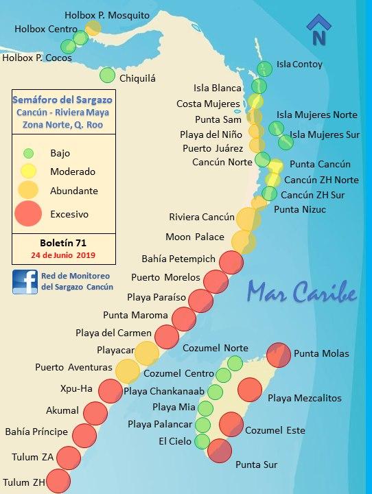 5 puntos para dimensionar el problema de la llegada de sargazo al Caribe mexicano