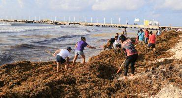 Que dice AMLO que problema de sargazo en playas de Quintana Roo no es grave