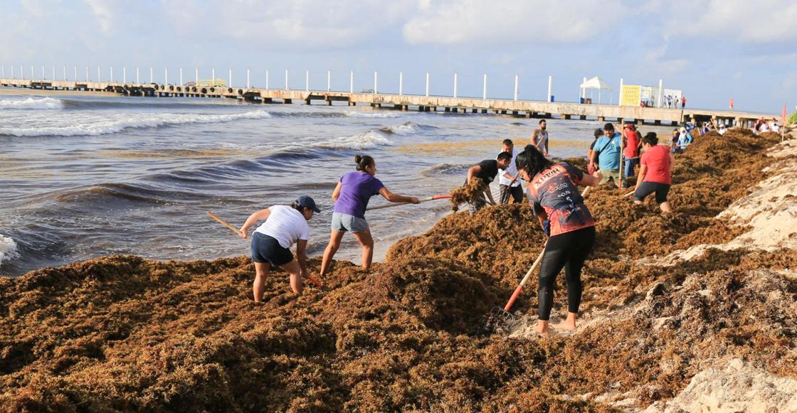 Quintana Roo declaró emergencia en 10 municipios por sargazo