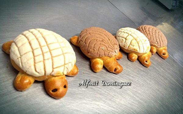 ¡No se conformen con migajas! Llegan las tortuconchas y hamburconconchas