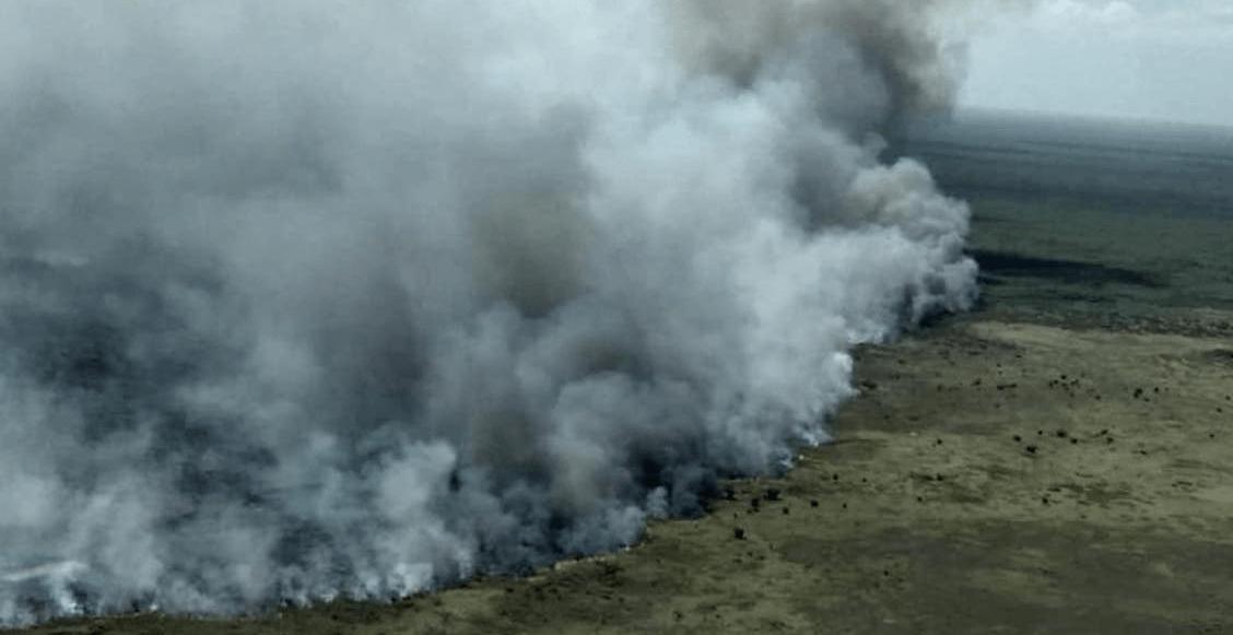 Incendio en la Reserva de la Biosfera de Sian Ka'an afectó a más de 2 mil hectáreas