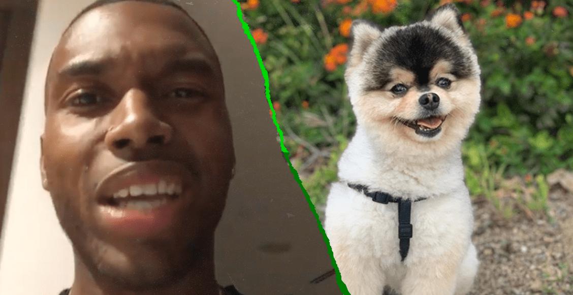El emotivo video en el que Daniel Sturridge pide que le devuelvan a su perro