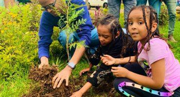 ¡Wow! Etiopía plantó más de 350 millones de árboles en solo 12 horas