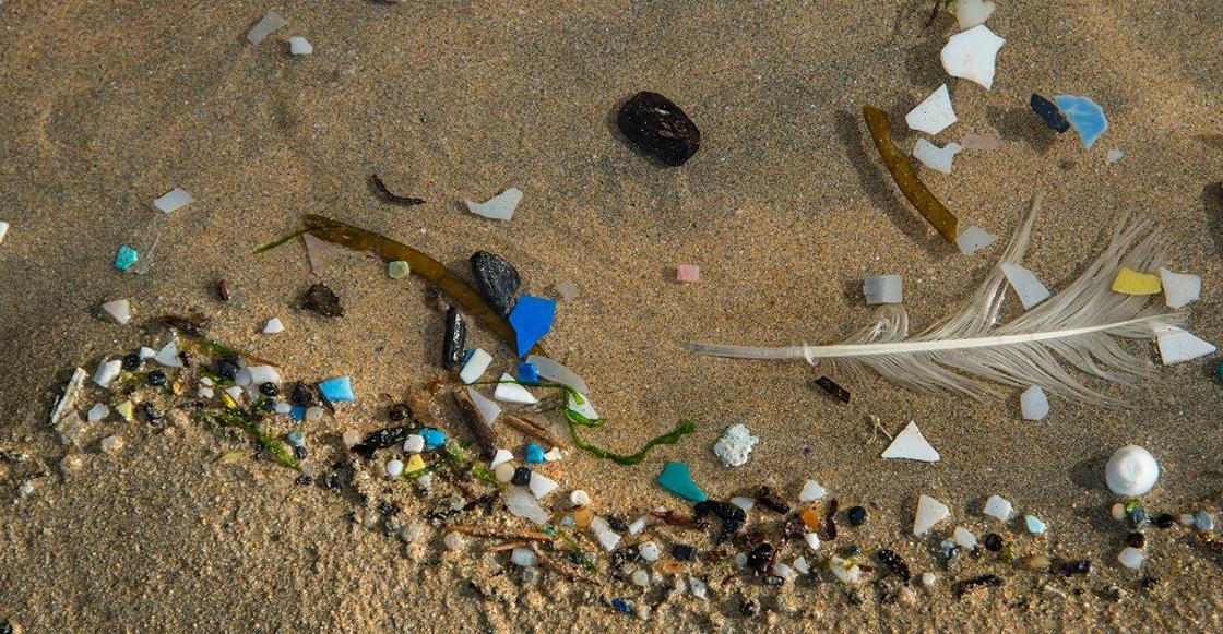 Científicos de la UNAM confirman la presencia de microplásticos en las playas de México