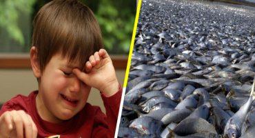 Un tercio de peces mexicanos, en peligro de extinción 😓