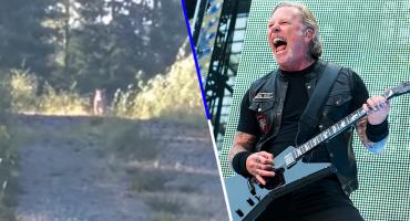 Bien merol: Gracias a Metallica, esta mujer se pudo salvar del ataque de un puma