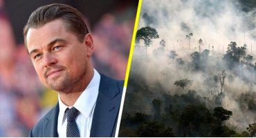 Leonardo DiCaprio ayudará al Amazonas a través de su fundación 'Earth Alliance'
