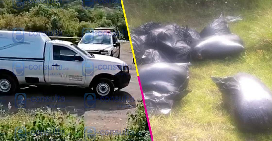Encuentran más de 12 bolsas con restos humanos en Maltrata, Veracruz