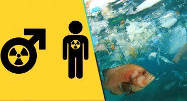 Estudio dice que el cuidado al medio ambiente es relacionado con la homosexualidad