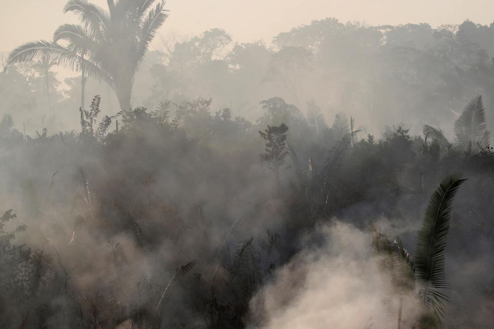 incendio.selva-del-amazonas