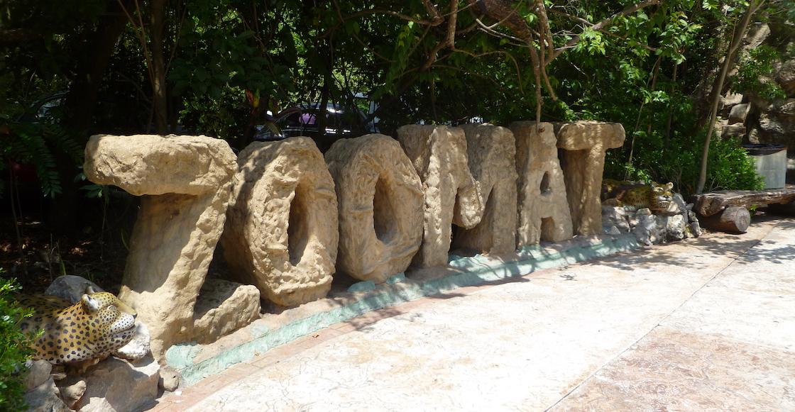 Pa' que aprenda: Lo sentenciaron a limpiar el zoológico de Chiapas por 'intento de cacería'