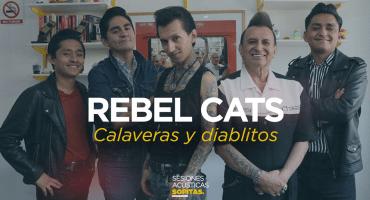 Sesiones Acústicas en Sopitas.com presenta: Rebel Cats