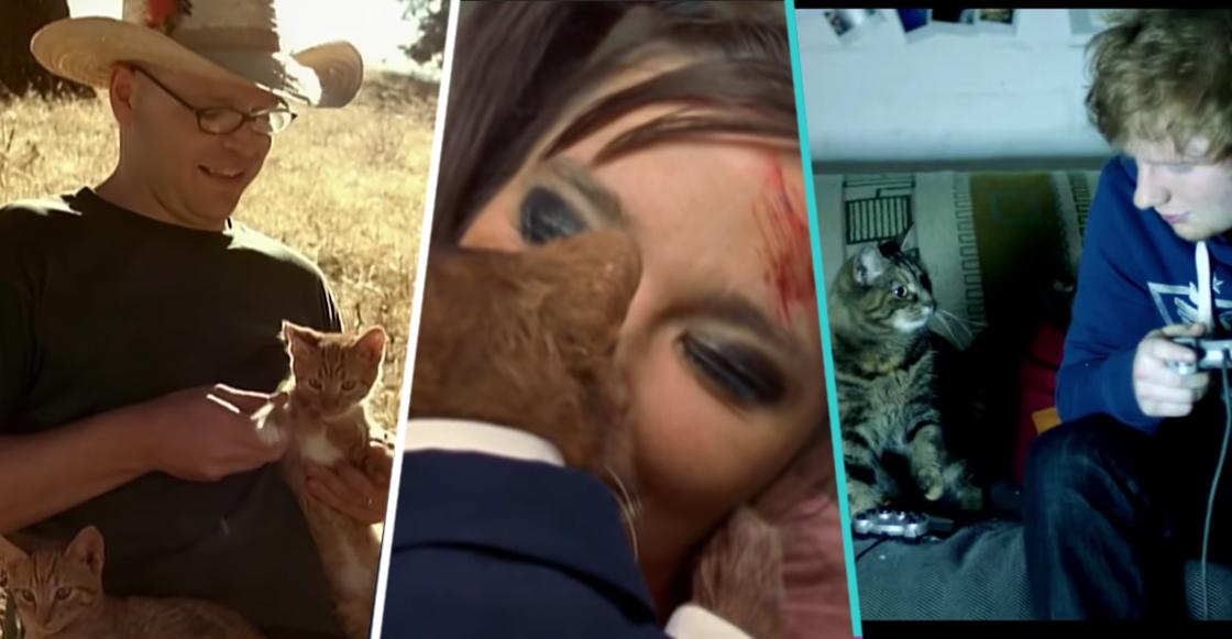 ¡Meow! 12 videos musicales protagonizados por gatos