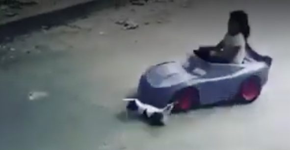 Le quedan seis vidas: Niña atropella a un gato con coche de juguete y se vuelve viral
