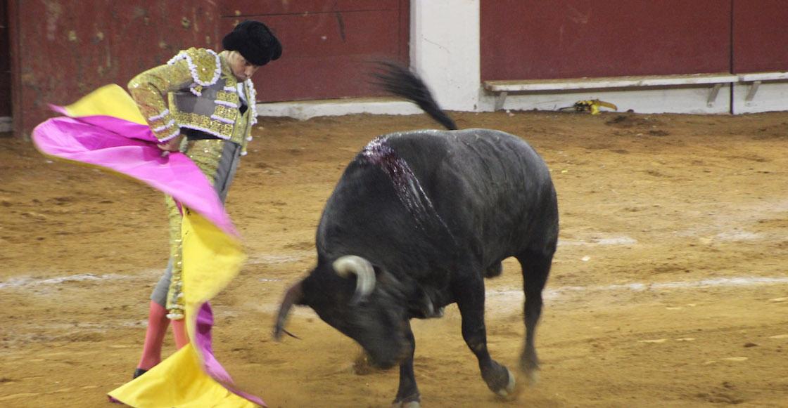 amlo-consulta-corridas-toros-mexico-acepta