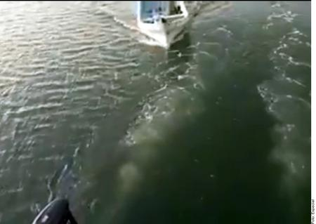 Ni en el mar estamos a salvo: Turista graba cómo comando armado asalta su embarcación
